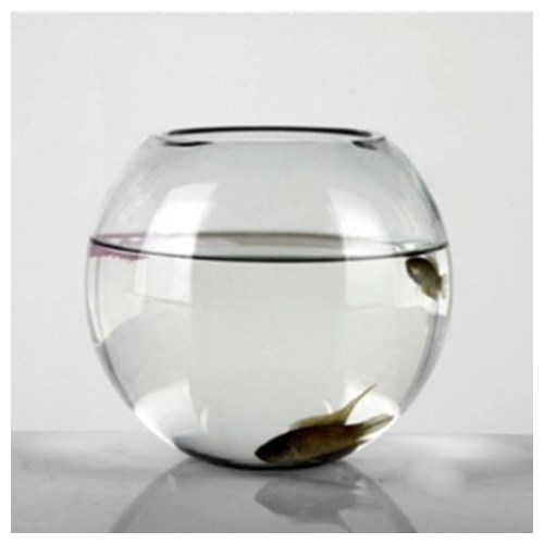 Fish Bowl (Small)