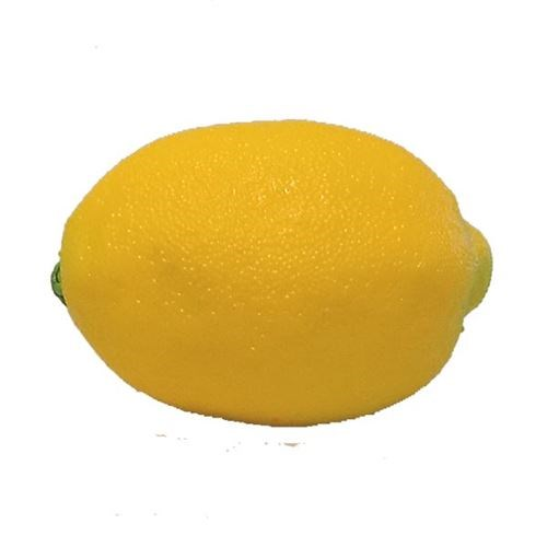 Artificial Lemon 70x100mmD