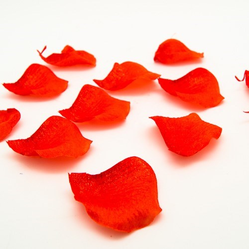 Art. Rose Petals 5cm Dia (80pc