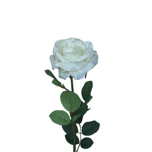 Rose Single - 70cm