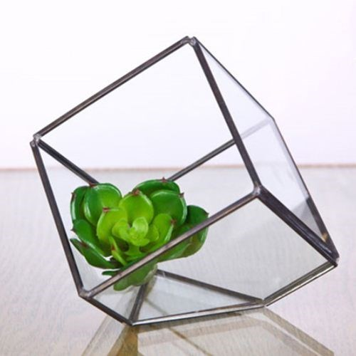 Small Square Terrarium