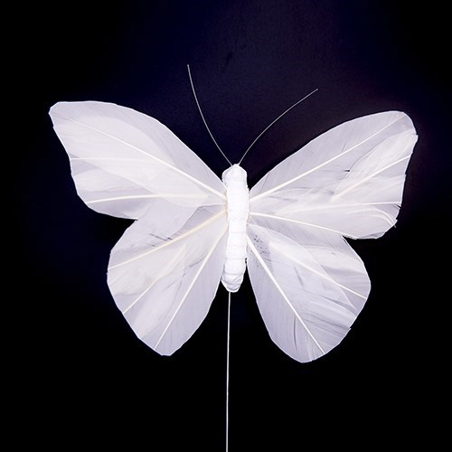 White Feather Butterfly 20 x 14cm - 6 pcs