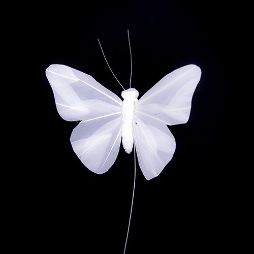 White Feather Butterfly 14 x 9cm - 6 pcs