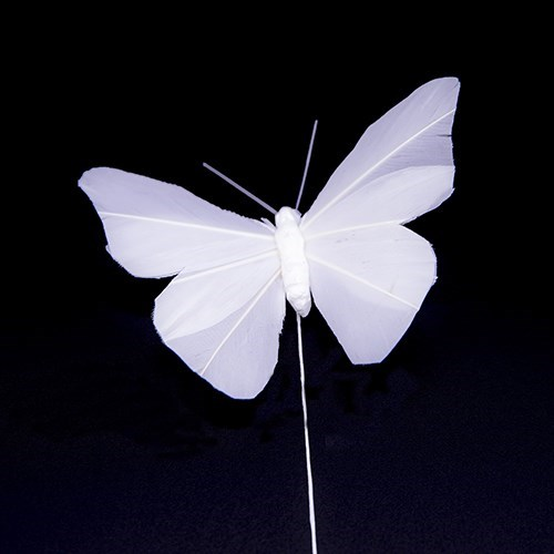 White Feather Butterfly 10 x 7cm - 6 pcs