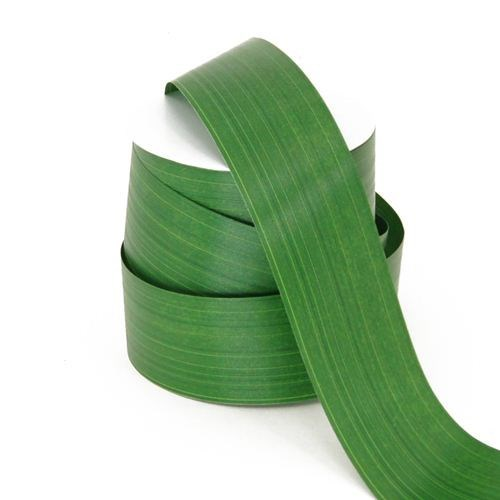 Aspidistra Leaf Ribbon - Green