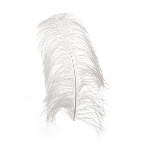 White Ostrich Feather 40-45cm