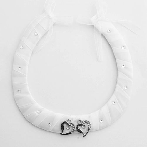 Wedding Horse Shoe