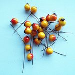 Berries Orange 10mm 200pcs/pk