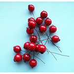 Berries Red10mm 200pcs/pk