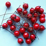 Berries Red12mm 200pcs/pk
