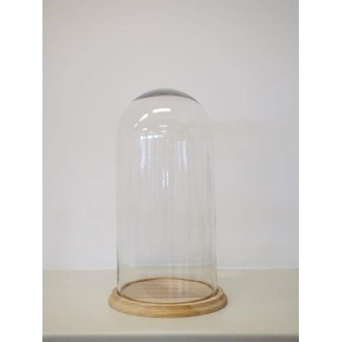 Xlarge Glass Dome- 28.5 x 52H cm